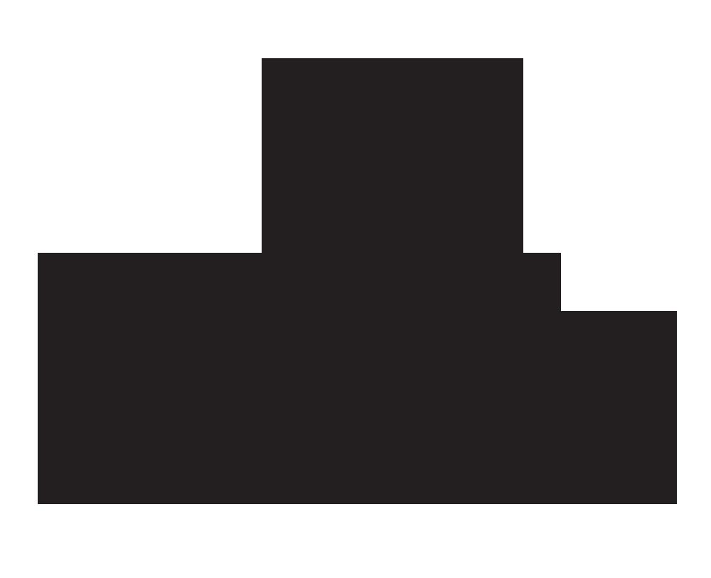 Platform Beer's Logo
